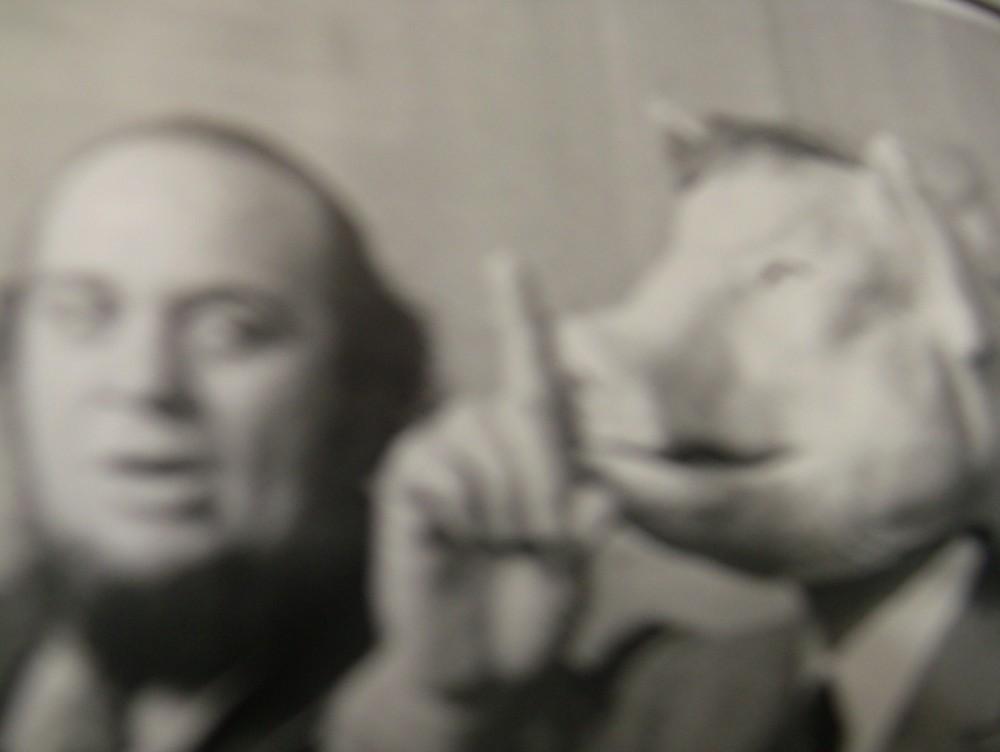 1969, Pasolini sul set di Porcile